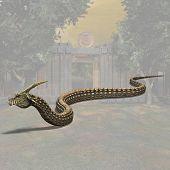 Dinoconda #03
