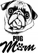 Animal Dog Pug 5Tg6Yqa Mom.eps poster