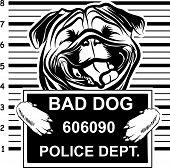Animal Dog Pug Vex5Tb Bad.eps poster