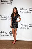 LOS ANGELES - AUGUST 1:  Kelsey Chow arrive(s) at the 2010 ABC Summer Press Tour Party at Beverly Hilton Hotel on August 1, 2010 in Beverly Hills, CA