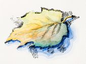 Lonely autumn leaf, watercolor with slate-pencil painting