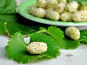 image of mulberry  - Fresh white mulberries on mulberry leaf and on plate