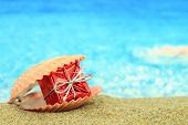 picture of cockle shell  - Gift box in a sea shell on the beach - JPG