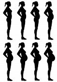 stock photo of obgyn  - A side view illustration of 8 female silhouette - JPG