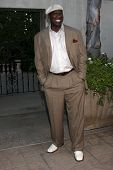 LOS ANGELES - JUL 24:  Michael Clarke Duncan arrives at  the 12th Annual HollyRod Foundation DesignCare Event at Ron Burkle's Green Acres Estate on July24, 2010 in Beverly Hills, CA ....