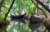 Canoe boats on backwaters, India