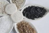 Five Flavors of Flaked Sea Salts with Sand Dollars