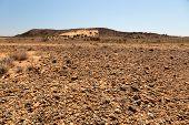 Flinders Ranges Landscape. South Australia.