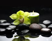 Green orchid and green candle on black stones