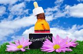a dropper bottle and some purple flowers on the grass with a blackboard label with the word homeopat