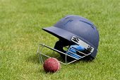 picture of cricket bat  - Cricket ball - JPG