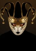 picture of masker  - portrait of a woman with Venice mask - JPG