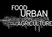 Word cloud - urban food