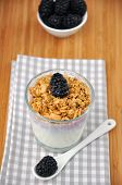 stock photo of top-less  - Greek Yoghurt with organic blackberries  and granola - JPG