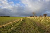 Dramatic Skies Over Bridleway