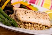 cooked mahi mahi fish fillet