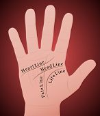 Palmistry Right Hand Main Lines