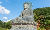 stock photo of seoraksan  - Giant statue of Buddha in the Sinheungsa Temple in Seoraksan National Park - JPG