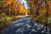 Autumn road with long shadows in colorful fall forest. Algonquin Provincial park, Ontario, Canada.