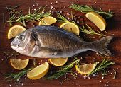 Raw dorado fish with rosemary and sea salt server on old wooden table.