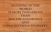 Nothing in the world is more dangerous than sincere ignorance and conscientious stupidity - quote on