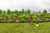 Planting A Beautiful Formal Flower Garden