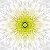 White Mandala Concentric Flower Center Kaleidoscope