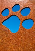 Silhouette of a cat paw in rusty metal wall