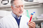 Scientist looking at a test tube in a laboratory