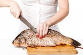 Cook Cut Fish