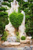 Bush In Heart Shape In The Rock