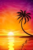 A Beautiful Sunset, Sunrise with Palm Tree - Vector EPS 10.