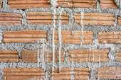Texture bricks wall