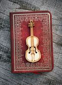 Old classical violin with books
