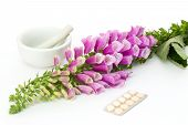 Digitalis With Cardiac Pills