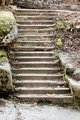 Stone steps in park
