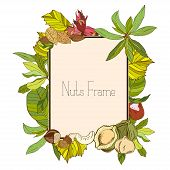 Rectangle frame with nuts and leaves