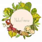 Round frame with nuts and leaves