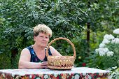 elderly woman with  basket of apples in the garden