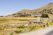 Rural life in Peru (Lake Titicaca region)