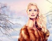 stock photo of mink  - Winter Woman in Luxury Fur Coat - JPG
