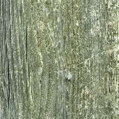 Beautiful Brown Wooden Texture Or Background