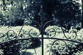 Garden Gate Detail