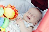 Baby Boy Laying In Pram