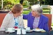 pic of understanding  - Two Cheerful Senior Best Friends Talking at the Outdoor Table Closely with Coffee and Snacks While One is Holding the Shoulder of the Other - JPG