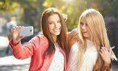 stock photo of selfie  - Friends making selfie - JPG