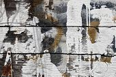 stock photo of tobacco barn  - Old tobacco barn boards with textured black surface - JPG