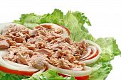Preparation of Thai spicy Tuna with Green salad poster