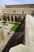 picture of century plant  - Rueda Cistercian monastery - JPG