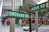 foto of orchard  - Street signs that says Orchard Road and Koek Road - JPG